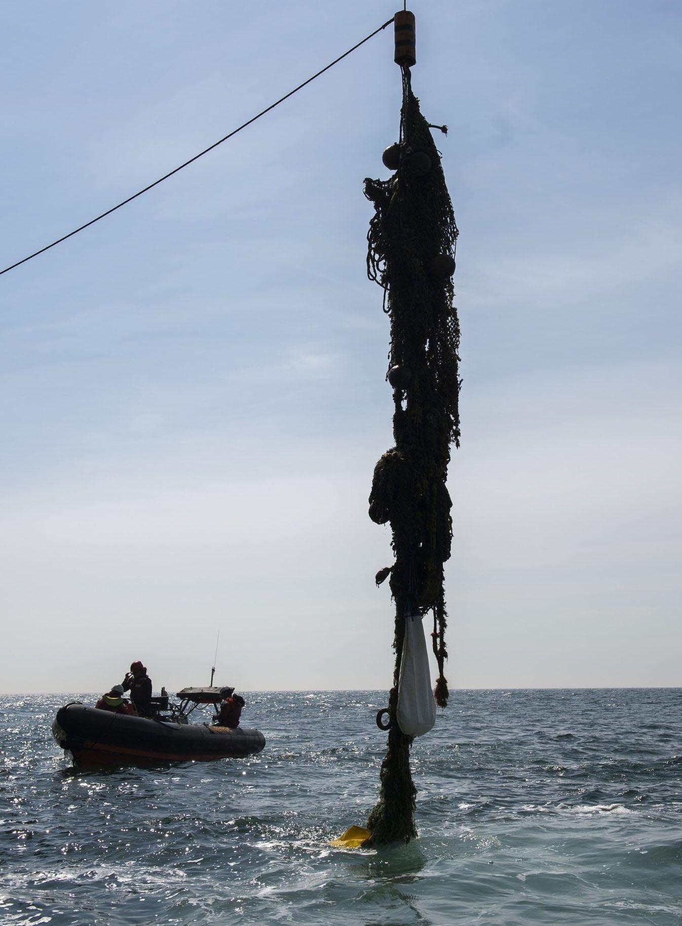 """Mehr als eine Tonne verlorenes Fangzeug kann die Besatzung des Greenpeace-Schiffes """"Arctic Sunrise"""" in wenigen Tagen aus der Nordsee bergen."""
