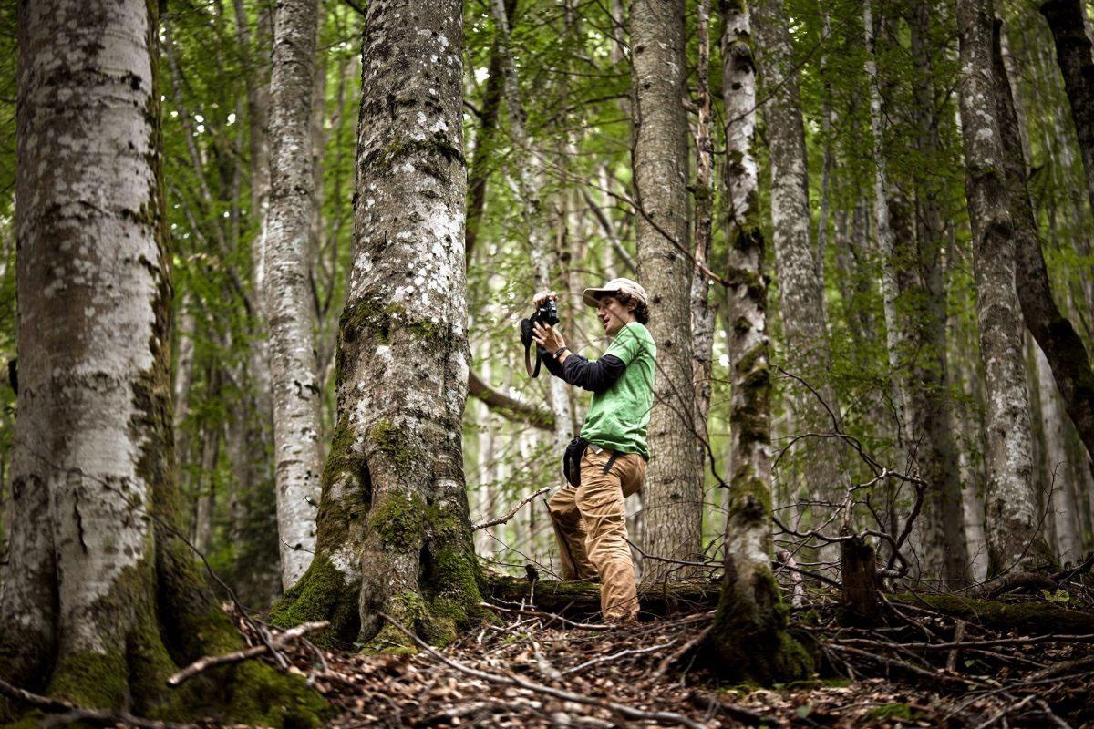 Art, Höhe, Durchmesser und Standort – Greenpeace-Aktivisten dokumentieren den Baumbestand in den rumänischen Karpaten.