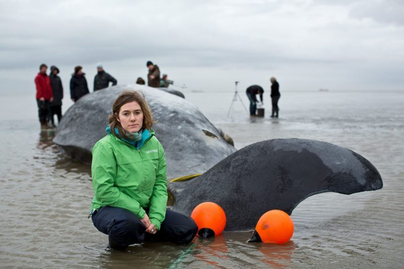 Greenpeace-Meeresexpertin Larissa Beumer bei den gestrandeten Walen.