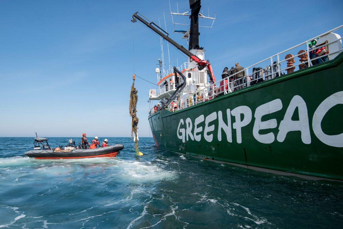 Fündig geworden: Greenpeace-Aktivisten und Taucher der niederländischen Organisation Ghost Fishing bergen im Mai 2016 verlorene Fischernetze im Schutzgebiet Sylter Außenriff.