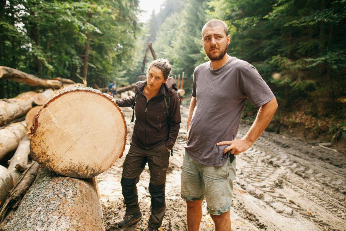 Greenpeacer dokumentieren im Sommer 2016 auch die Zerstörung in den alten Urwäldern Rumäniens.