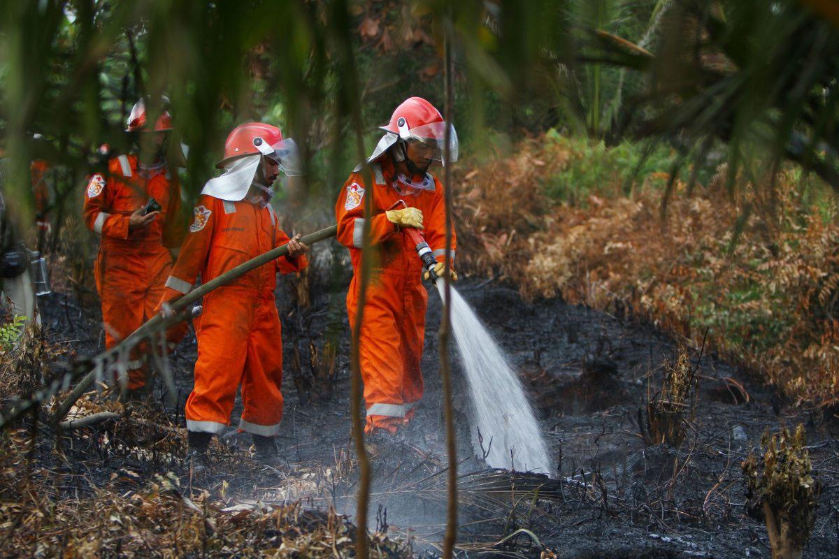 Teluk Meranti, Riau, Indonesien: Greenpeace-Ehrenamtliche löschen Torfbrände. Sie durchlaufen 2016 ein Training, um Teil eines Feuerschutzsteams zu werden.