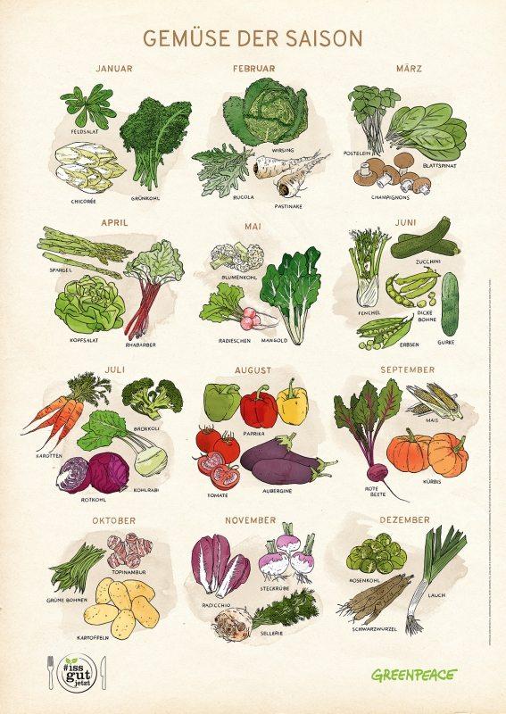 Weniger Fleisch, mehr Gemüse essen! Dieses Poster verrät, wann welche Sorten Saison haben. Zu bestellen unter: Tel. 040 / 30618 - 120, foerderer@greenpeace.de