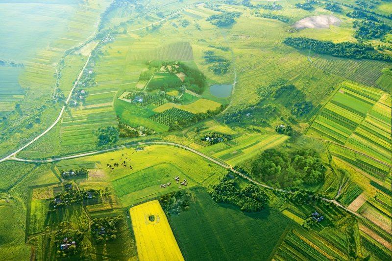 Die positive Vision: ökologisch-vielfältige Agrarwirtschaft.