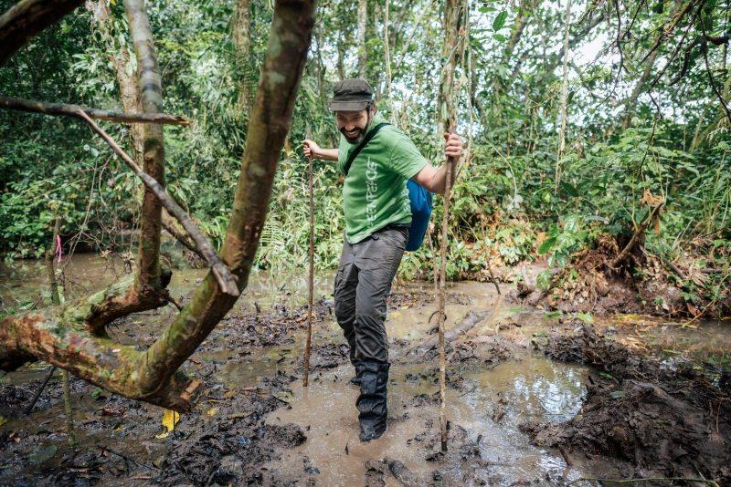Der Weg durchs Moor bis zur Bohrstelle ist beschwerlich. Lianen geben den Expeditionsteilnehmern Halt.