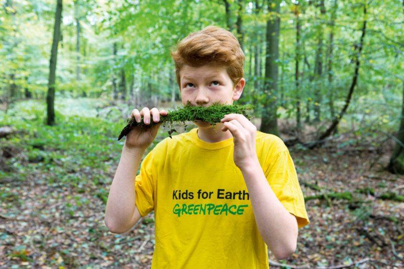 Wälder sind nicht nur wichtig fürs Klima, sondern auch für das Wohlergehen der Menschen und den Artenschutz.