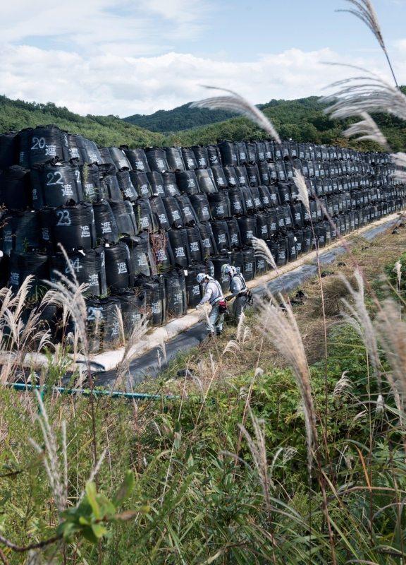 Seit dem Super-GAU in Fukushima misst Greenpeace jedes Jahr vor Ort und nimmt Proben.