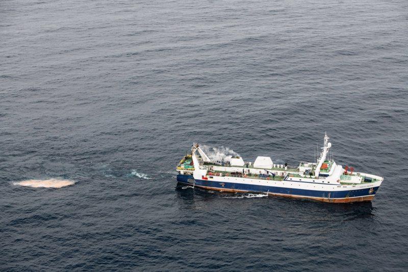 Ein Krillfänger mit seiner Beute: Rosa schimmert der Fang im Netz. Für die Übergabe an Kühlschiffe ankern die Trawler in Buchten, unweit von Pinguin- und Robbenkolonien. Die Antarktiskommission missbilligt diese Praxis, die den Meeresgrund schädigt und das Ökosystem gefährdet.