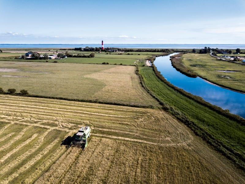 Noch fühlen sich die nordfriesischen Insulaner hinter den Deichen sicher, doch sie wissen, dass der Wasserspiegel kontinuierlich steigen wird