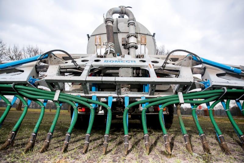 Problematische Gülleausbringung: In der industriellen Landwirtschaft fällt mehr Kot und Urin an, als Pflanzen auf dem Acker aufnehmen und verwerten können