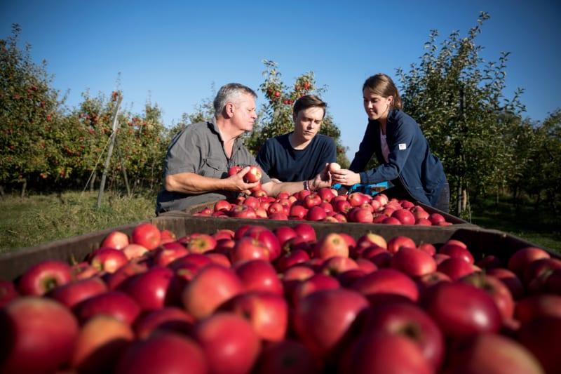 Bei der Klimakage dabei: Johannes und Franziska Blohm sollen einmal den Obsthof ihres Vaters im Alten Land bei Hamburg übernehmen