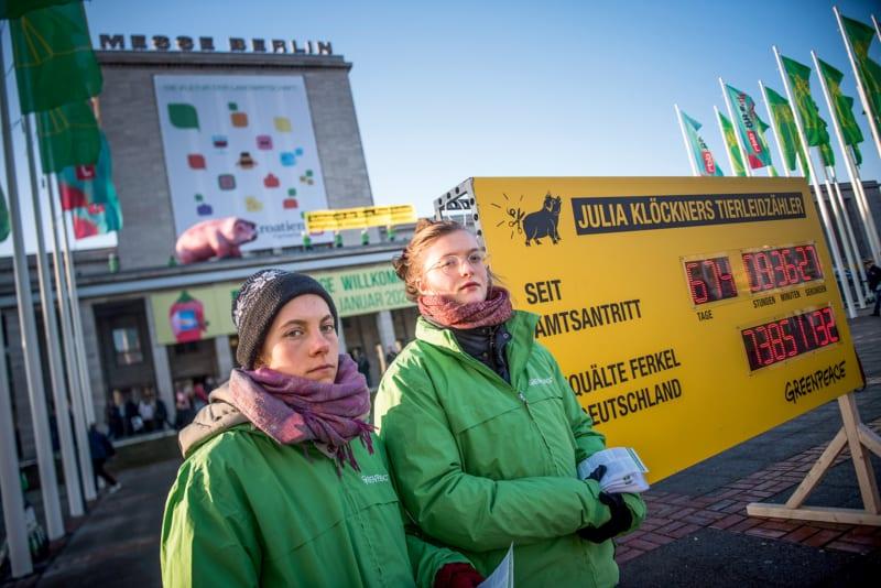 Mit einem digitalen Tierleidzähler prangern Greenpeace-Freiwillige bei der Grünen Woche in Berlin die Untätigkeit der Bundeslandwirtschaftsministerin an