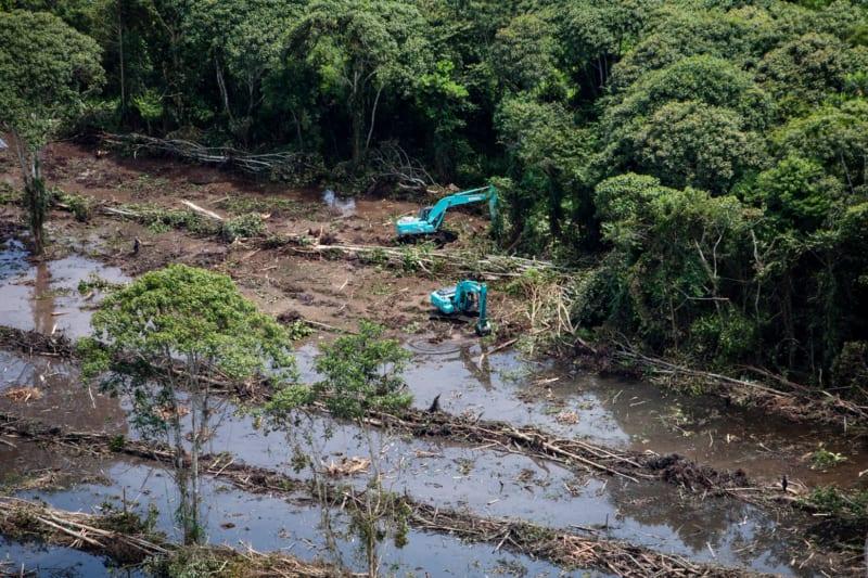 Baum für Baum fressen sich Bagger immer weiter in den intakten Torfmoor-Regenwald der indonesischen Insel Kalimantan vor. Die Heimat vieler Tiere wie etwa Nasenaffen oder Seidelbastgewächse wird zerstört, entwässert, trockengelegt und mit Plantagen bestückt. Die Aufnahme stammt aus dem Jahr 2013