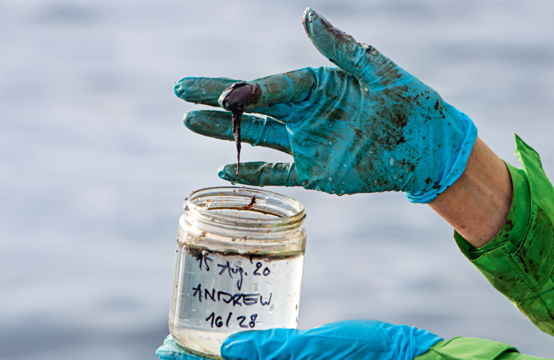 """In der Nähe des von BP betriebenen """"Andrew""""-Ölfeldes im britischen Hoheitsgebiet der Nordsee entdeckt die Crew der """"Esperanza"""" einen Ölteppich. Meeresexpertin Sandra Schöttner nimmt Proben von der Wasseroberfläche"""