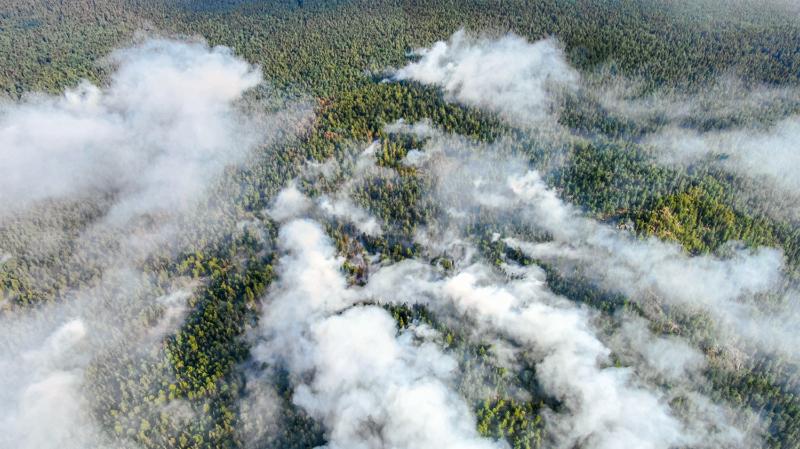 Großflächige Brände in einem westsibirischen Naturschutzgebiet