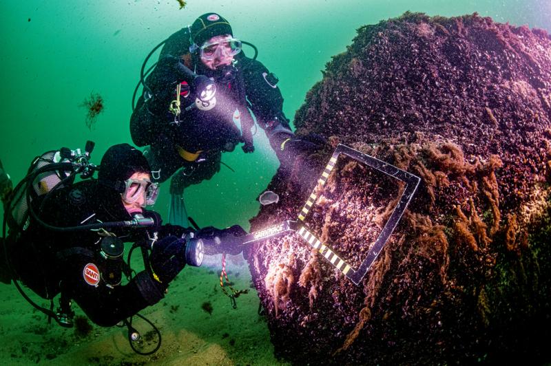 """Greenpeace-Taucher suchen im Schutzgebiet """"Adlergrund"""" vor Rügen am Meeresboden Spuren der Zerstörung durch Grundschleppnetze. Bei diesem Felsen werden sie fündig: Der fehlende Bewuchs mit Algen und Muscheln legt nahe, dass die zerstörerische Fischereimethode das Leben auf der Oberfläche abrasiert hat"""