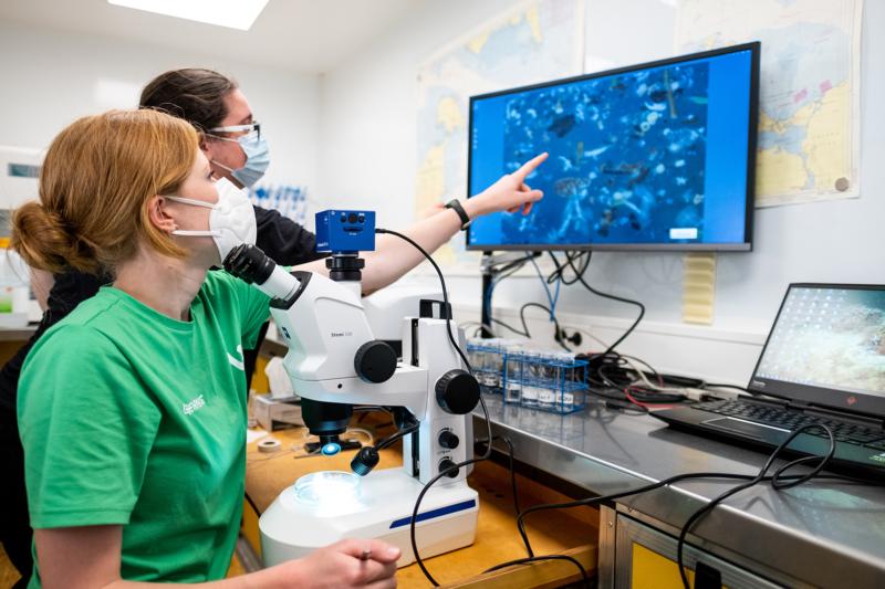 """Das Mikroskop bringt Klarheit: In jeder Probe findet das Team an Bord der """"Beluga II"""" Mikroplastikpartikel"""