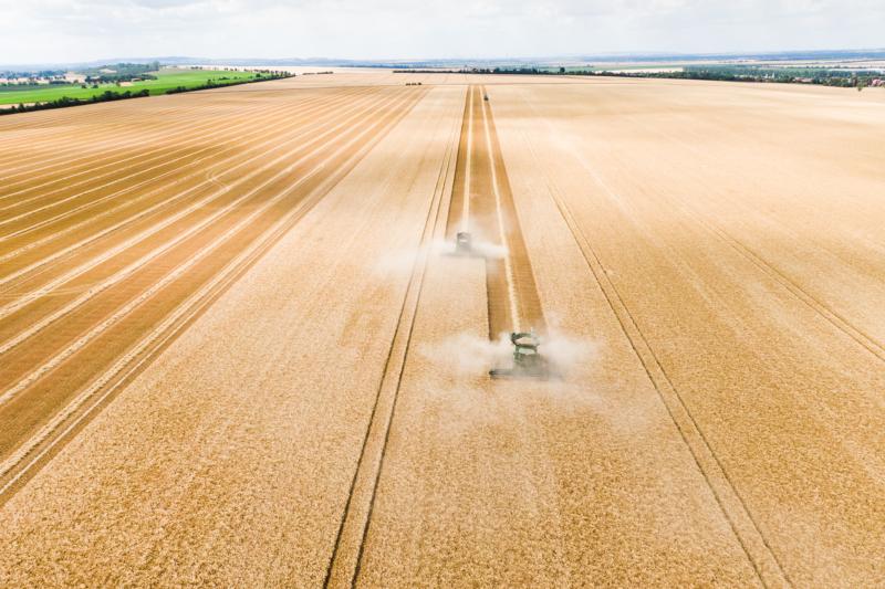 Auch in Deutschland gibt es Felder, so weit das Auge reicht – große Landwirtschaftsbetriebe bekommen nach wie vor die meisten Fördergelder