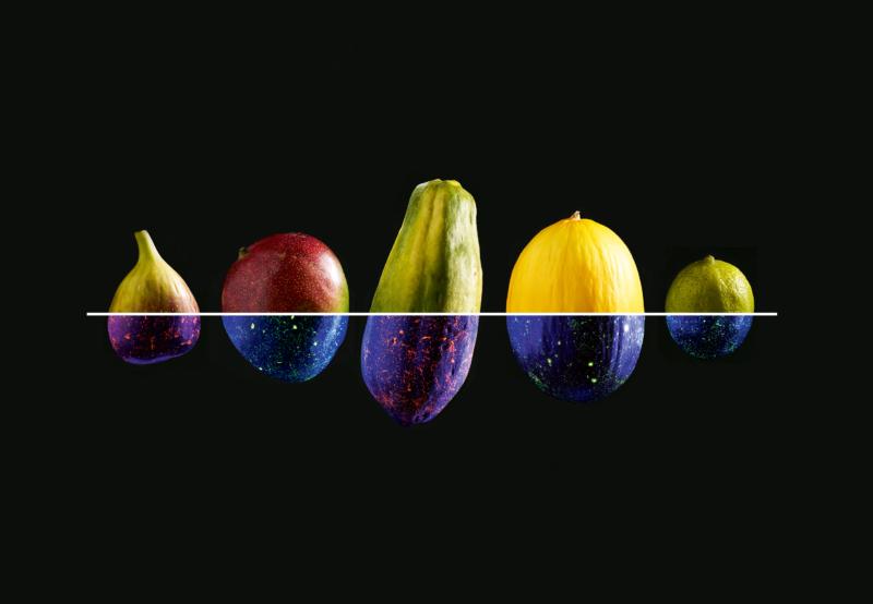 Inszeniertes Studiofoto: Die Leuchtfarbe symbolisiert die Pestizidbelastung der aus Brasilien importierten Früchte